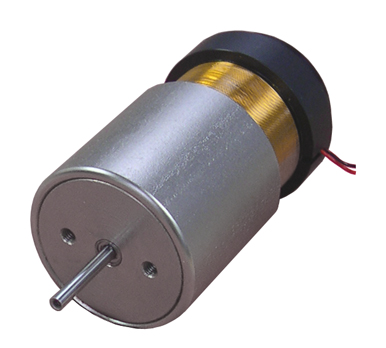 linear voice coil motors with internal bearing